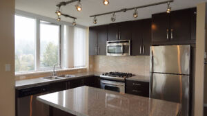 Beautiful Condo in The Nahanni for Rent!
