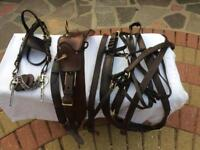 Horse - Brown Harness