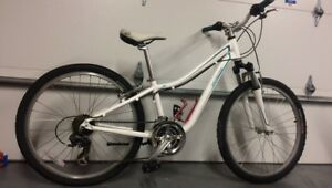 Hotrock specialized mountain bike