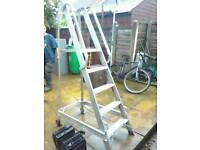 Industrial Safety Step Ladders