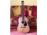 Martin D222 Acoustic Guitar