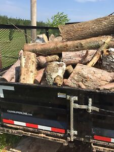 Firewood for Campfires, Fire pits, or Home in Sackville NB