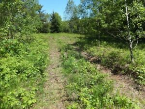 109 Acres Estate Property in Minden - $970 per Month