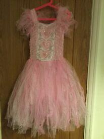 Lucy locket fairy dress