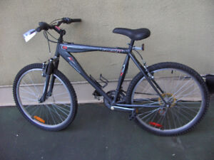 MINT MOUNTAIN BIKE RALEIGH BARELY USED FOR SALE
