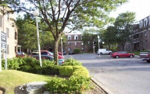 1 Bdm. Apartment for Rent in St. Catharines Hartzel & Rockwood!