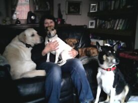 Exp Animal Handler; Alternative to Kennels; Home from Home Dog Boarding; Pet Sitting; Home visits