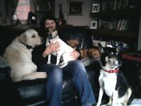Exp Animal Handler; Dog Home Boarding; Pet Sitting; Animal Care; Home visits