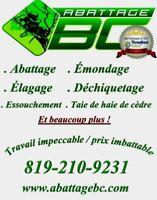 Abattage Emondage BC