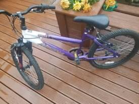 "14"" MAGNA bike"