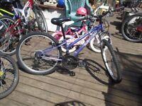 apollo xc 24 bike