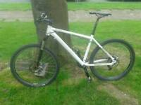 Broadman pro mountain bike