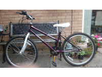GIRLS 5 SPEED PUSH BIKE 24 INCH ALLOY WHEELS. 10 YRS TO YOUNG TEEN
