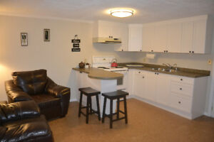 BEAUTIFUL ONE BEDROOM IN A BASEMENT APARTMENT FOR FEMALE STUDENT