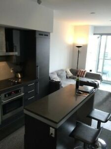 1 br condo King West DNA3 - for lease takeover September 1st