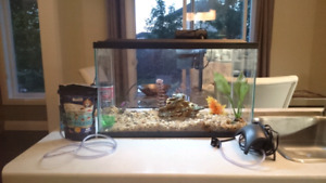 Fish tank, accessories, 1 new filter cartridge, fish food