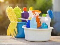 Cleaning lady (Valley area)