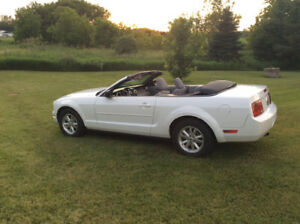 2007 Ford Mustang Convertible v6