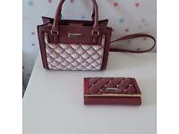 Handbag & Purse from River Island ***Like NEW***