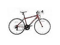 """Apollo Tempo 24"""" raceing bike"""