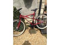 Large full size unisex mountain bike