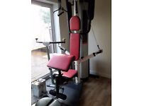 Weider multi gym