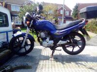 Sym xs125 2013
