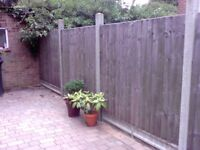 Fencing panels (Used)