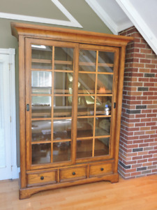 Large Bookcase / Display Unit