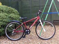 Apollo urban lightweight comfort bike (excellent condition)