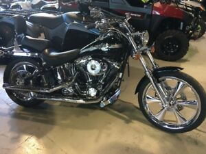 Wicked Nice 100th Anniversary Softail