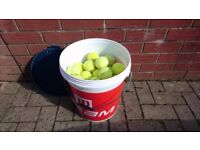 60 Used Tennis Balls for dog toys, beach games etc
