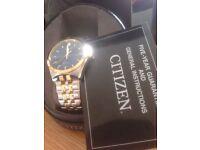 Men's Citizen Watch Brand new, Never worn £100 ono