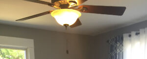 """Hunter 52""""  globe light ceiling fan with remote"""
