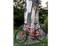 """Specialized Hardrock Sport 17"""" 24 speed hardtail mountain bike red. Can deliver, £120 ovno"""