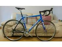 Trek ion pro road bike triathlon 105