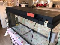 Juwel 90 litre fish tank.
