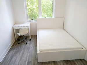 Brand new, bright 6 bedroom apartment minutes to Carleton!