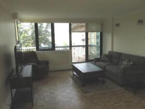 1 Bedroom Furnished Condo in James Bay