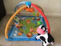 Musical Playmat baby gym