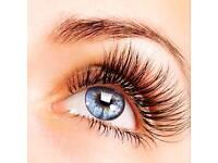 Diva Lash Complete Eyelash Course