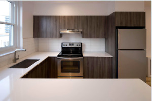 Brand new apartment steps from the Atwater Metro!