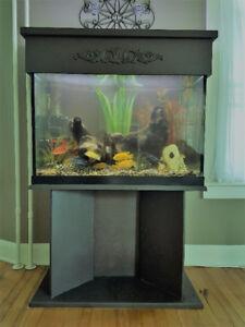 Aquarium 65 gallons et poissons