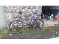 Mountain bike. Brand new only been used once