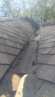 WE SPECIALIZE IN SHINGLES - DAMAGED / MISSING / BLOWN OFF