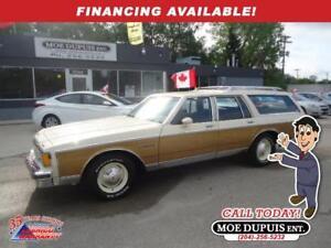 1984 Pontiac Parisienne SAFARI WOODY WAGON!!