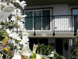 Spacious 1 bedroom unit. Well-maintained. Close to ocean