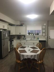Large 1 Bedroom Legal Suite for Rent in Silver Valley-MR