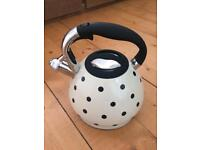 Stove top whistling kettle