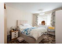 ! Perfect rooms in every corner ! LOW DEPOSIT!